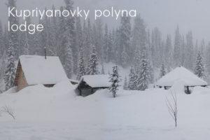 Siberian taiga, Kupriyanovky polyna